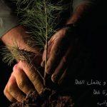 الإمام الأعظم