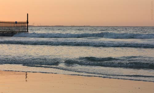 يعرفنى البحر Seashore