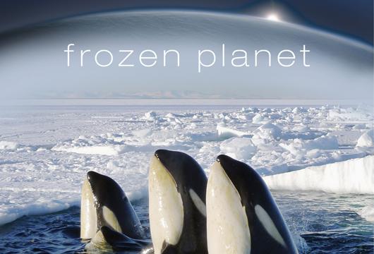 وثائقي: الكوكب المتجمد